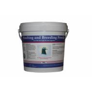 Pigeon Vitality Mue et élevage Powder (500g)